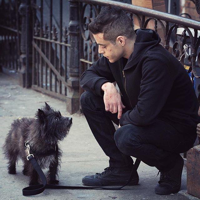 Rami Malek Dog